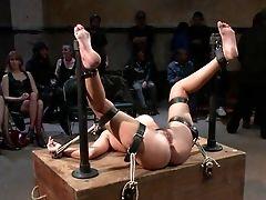 Abuse, BDSM, Bondage, Brutal, Domination, Extreme, Fisting, Hardcore, Humiliation, Public,