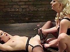 Babe, BDSM, Big Ass, Blonde, Boobless, Brunette, Choking Sex, Close Up, Curly, Domination,