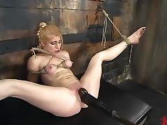 Bdsm: 1353 Vidéos