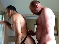 Amateur, Bear, Big Cock, Daddies,