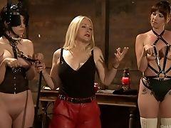 Fetish, Horny, Pornstar, Slave,