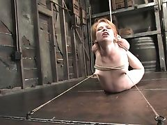 BDSM, Bondage, Boobless, Dildo, Fetish, Hogtied, Madison Young, Model, Redhead, Sex Toys,