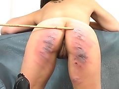 Ass, Babe, BDSM, Brunette, Cute, Femdom, Fetish, Friend, Spanking,